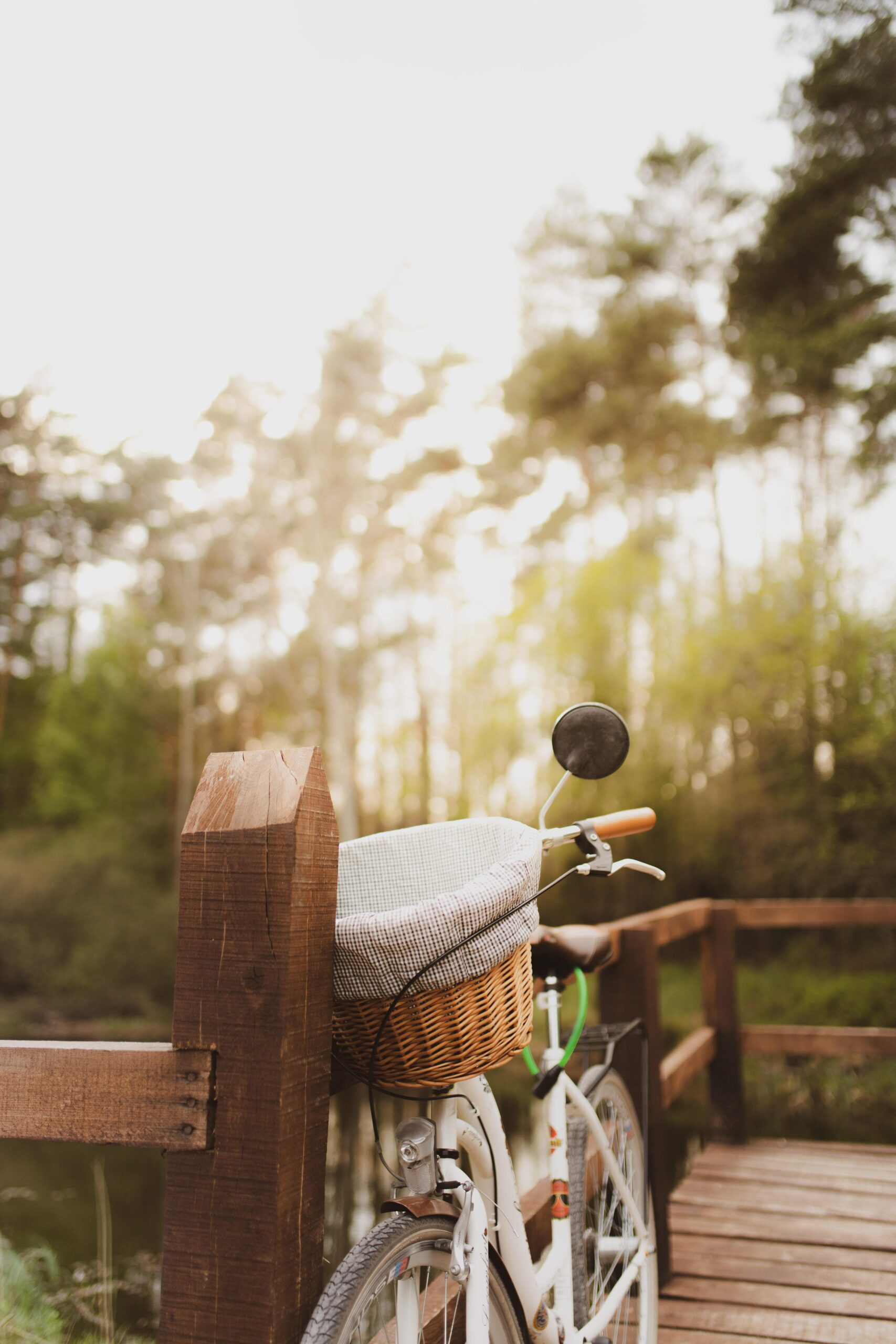 A vertical shot of a bicycle parked on a wooden bridge in the forest